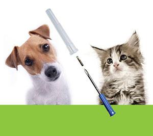 Od 1. septembra 2018 pribudli nové povinnosti vyplývajúce z novely zákona o  veterinárnej starostlivosti. Novela zavádza povinné čipovanie psov. db4992c2ffd